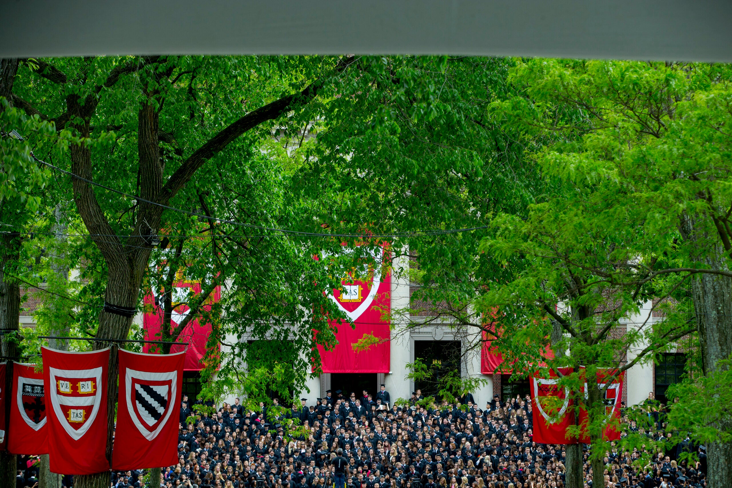 A commencement in Harvard Yard