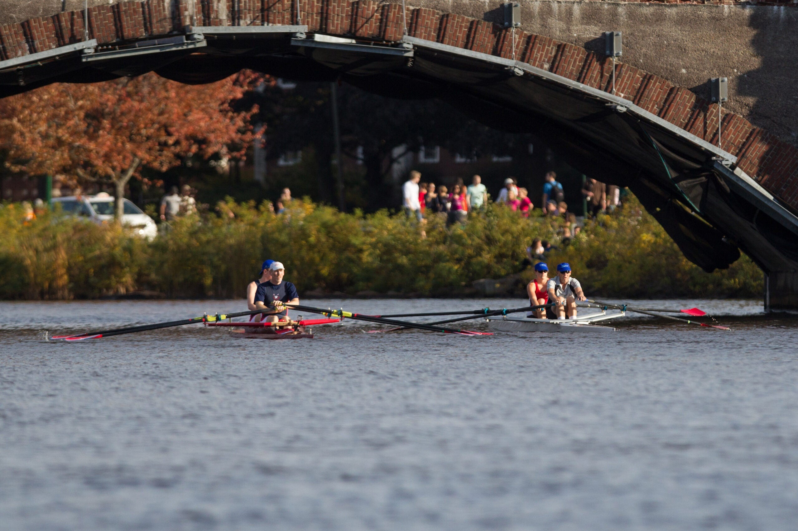 rowers on the charles river