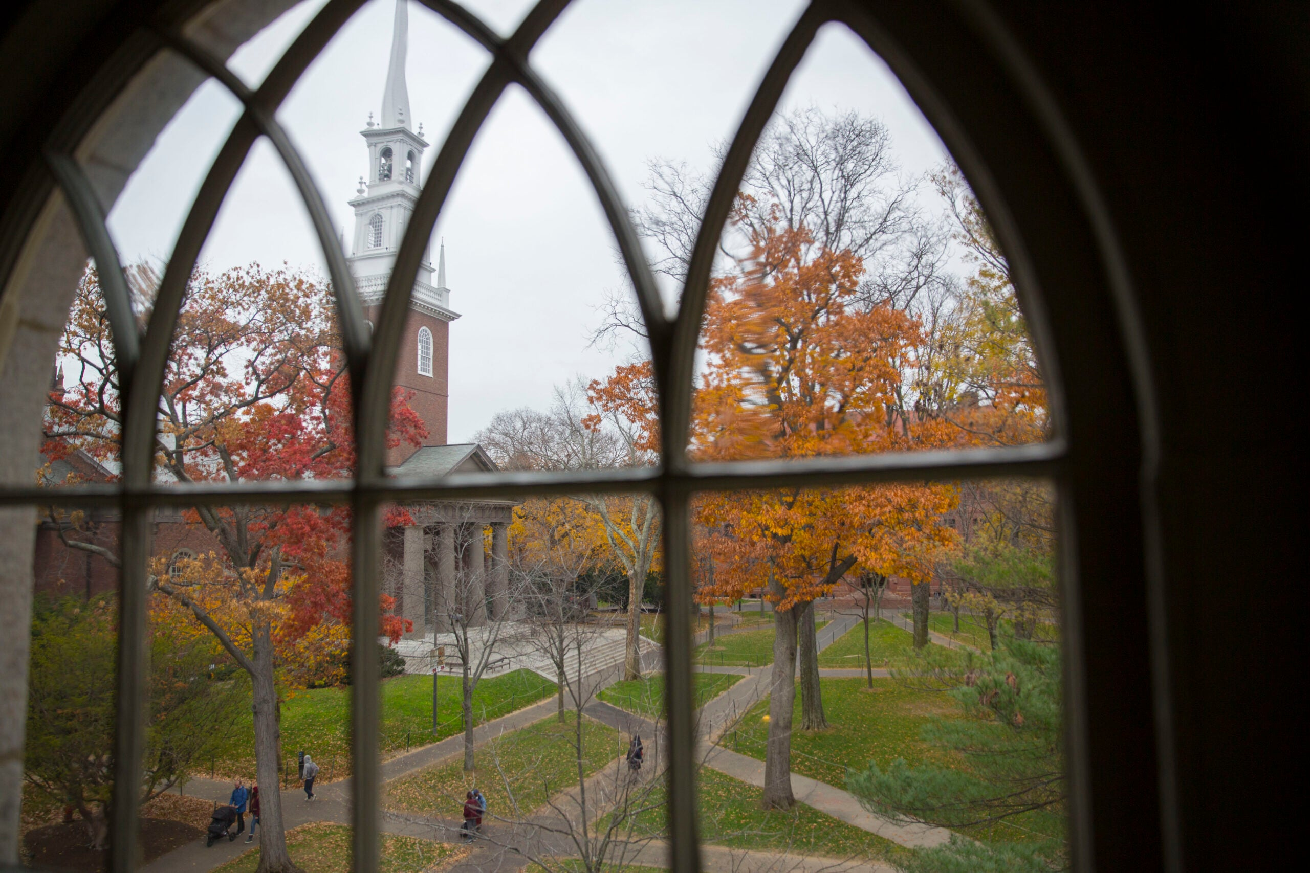 A view of Harvard Yard from a window