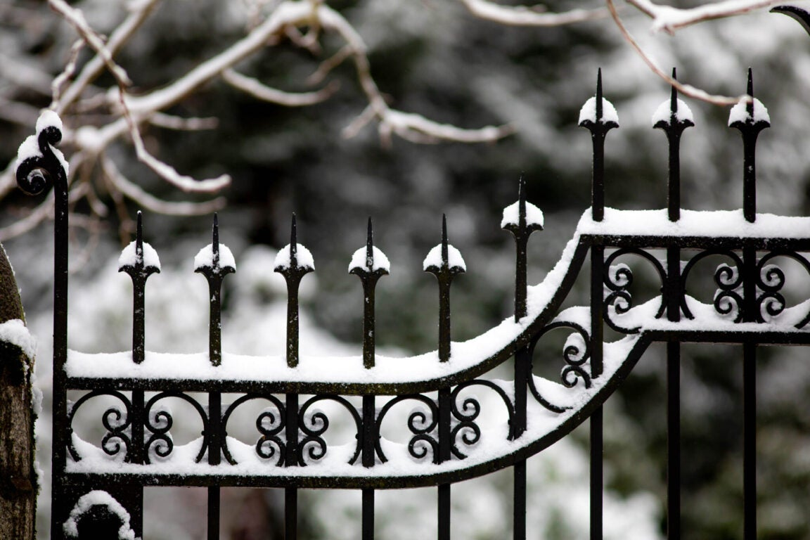 An iron fence covered in snow