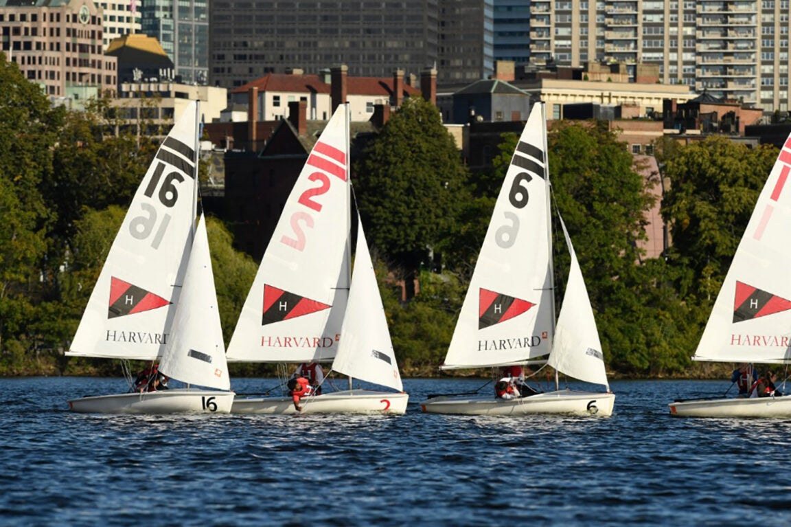 Sailboats on the Charles River.