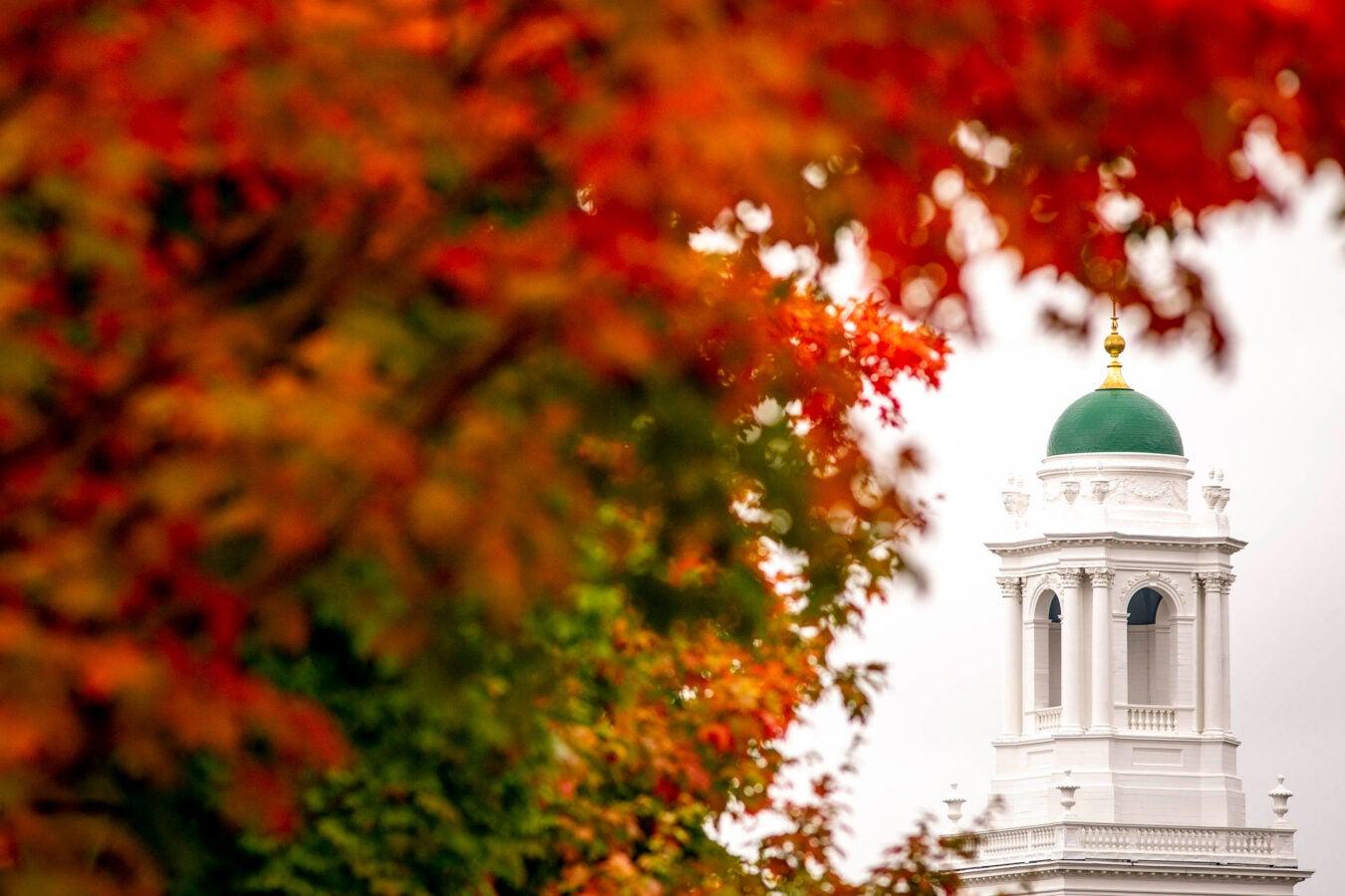 Harvard tower seen through red fall foliage