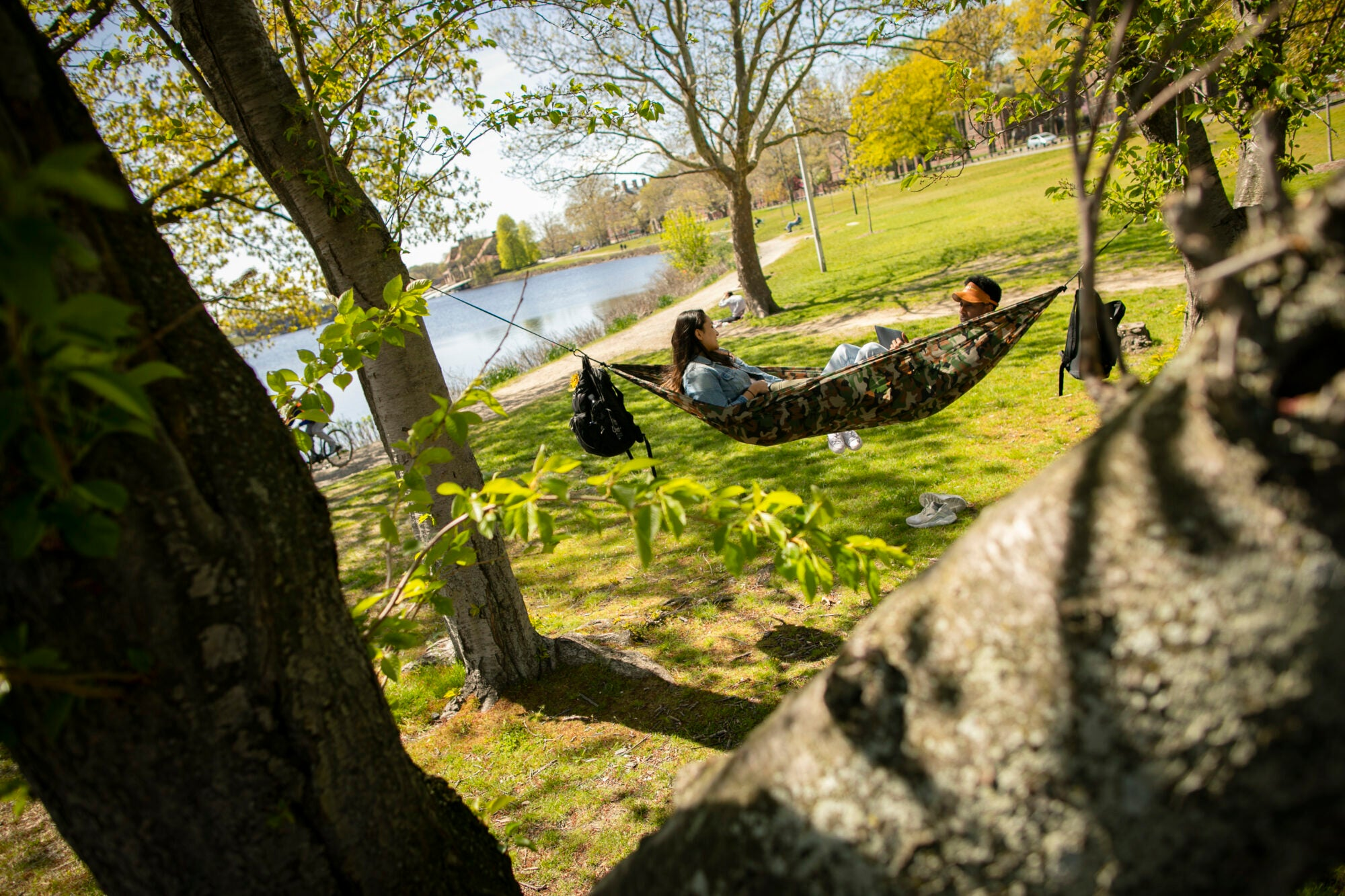Two students in a hammock