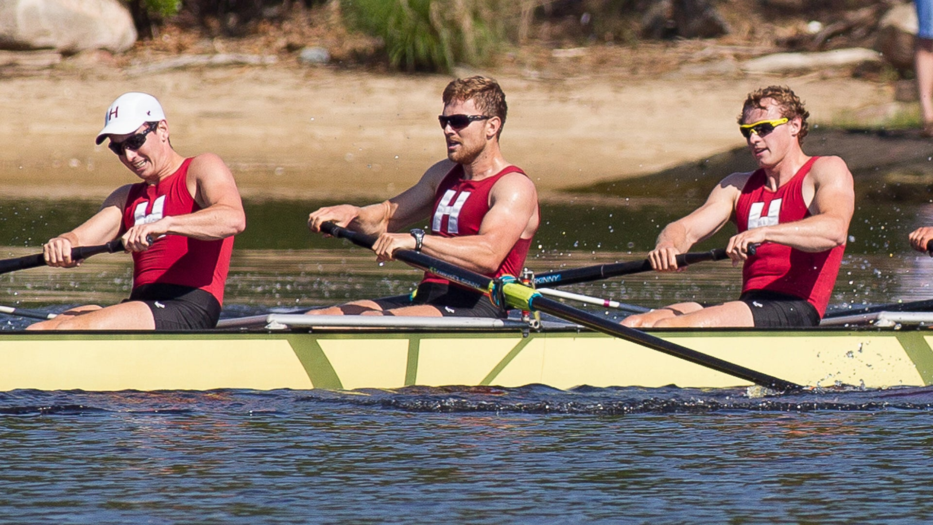 Harvard students rowing crew