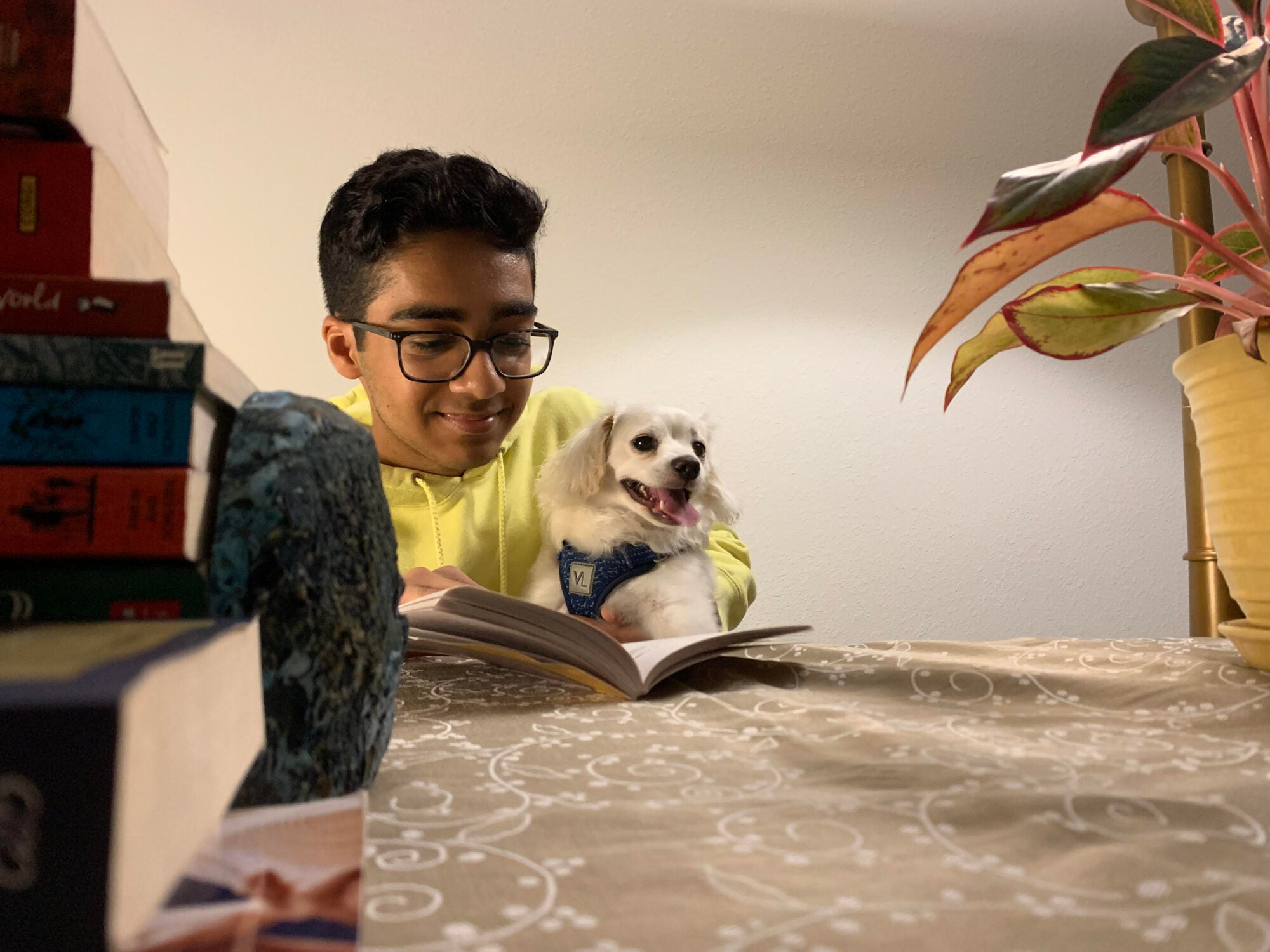 A student reads a book while holding a small puppy