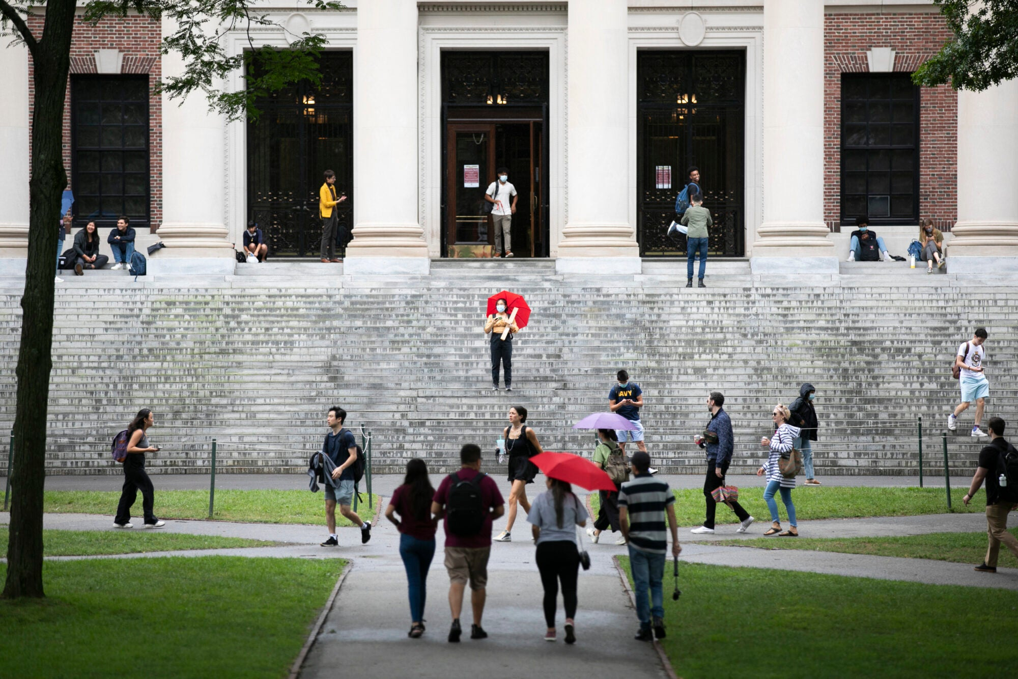 People, some with umbrellas, walk in front of and on the steps of Widener Library