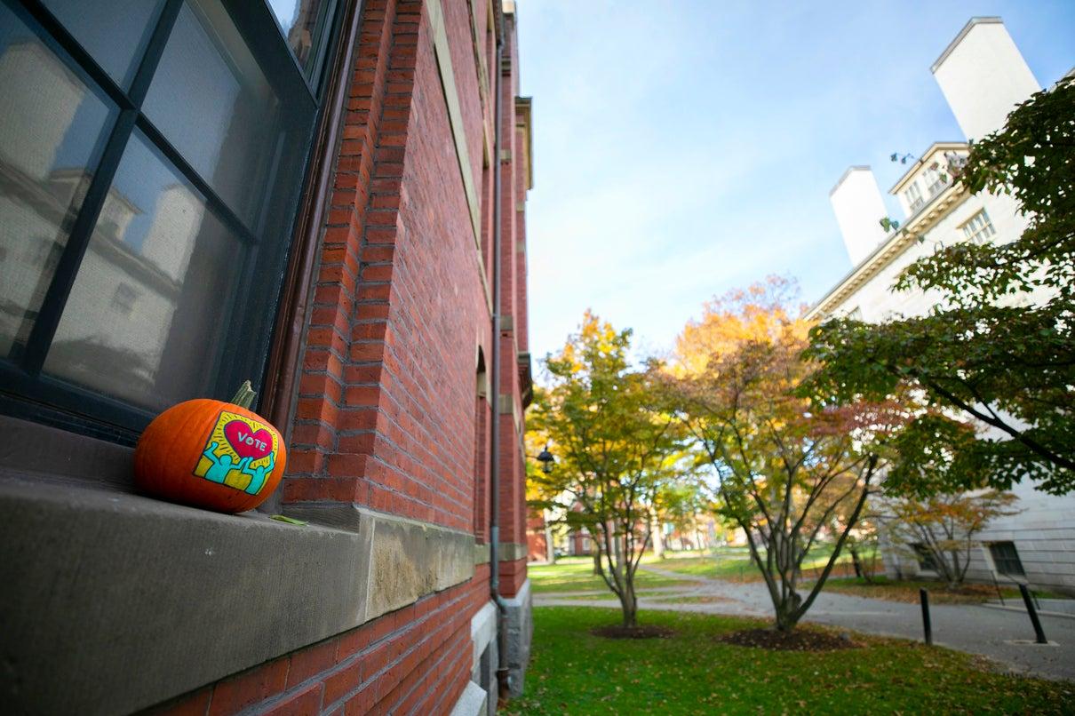 "A pumpkin on a windowsill that says ""vote"""