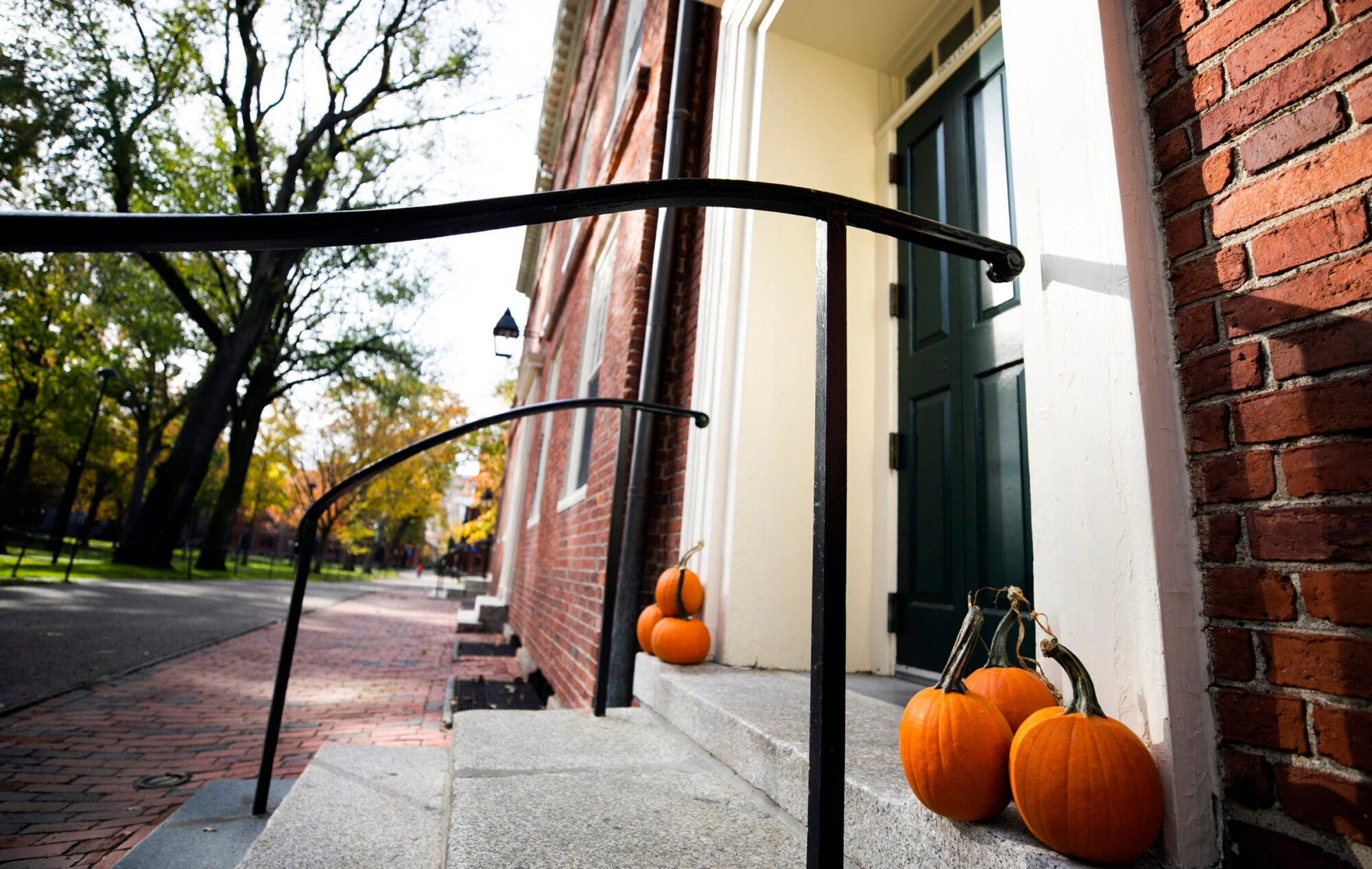 Three pumpkins on each side of a door in a brick building